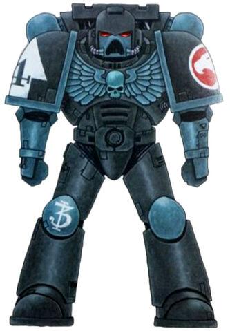 File:Astral Hawks Astartes.jpg