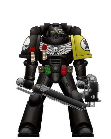 File:Deathwatch Imperial Fist Marine.jpg