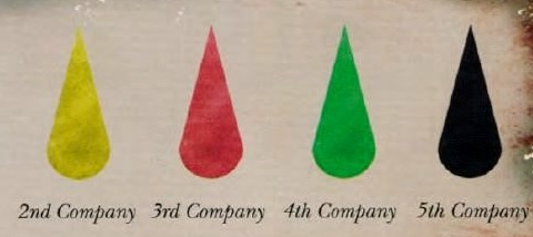 File:FT Company Markings2.jpg