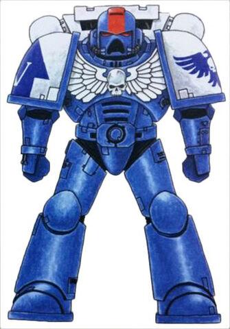 File:Imperial Hawks Astartes.jpg