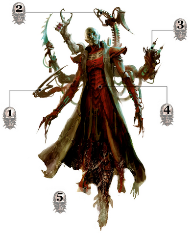 File:Haemonculus War Form.png