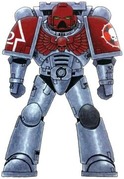 Iron Crusaders Astartes