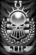 Silver Skulls Banner