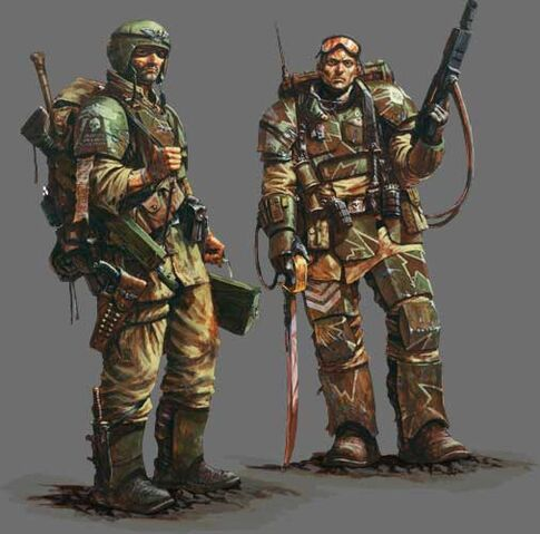 File:Imperial Guard Armour.jpg