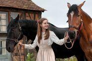 War-horse-20111116043853310 640w