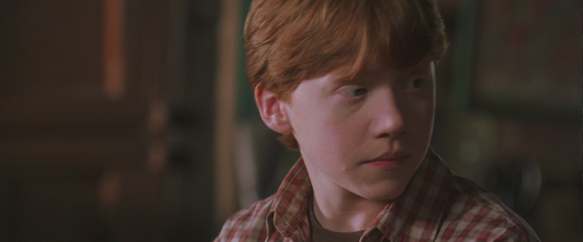 image harry potter and the chamber of secrets ronald weasley full resolution