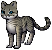 Warrior Cats Schlammfell