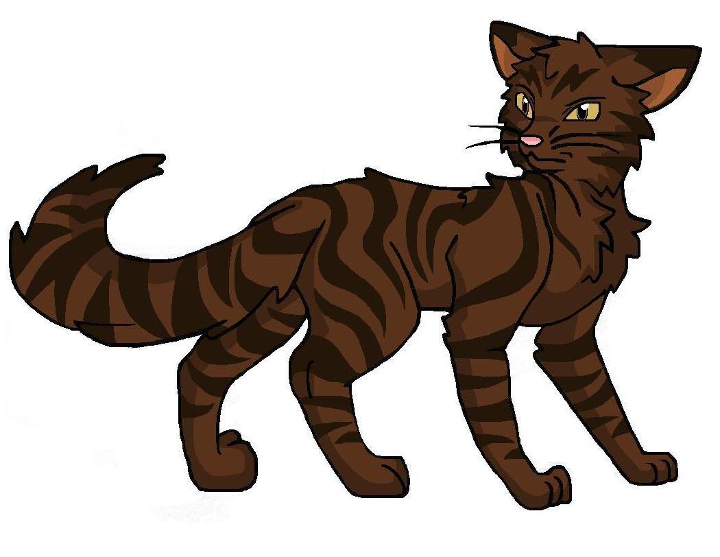 Warrior Cats Brombeerkralle