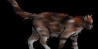 Mottledfur