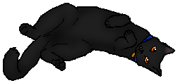 File:Copper.kittypet.png