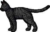 Darkstripe.rogue