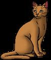 Tawnyfur.warrior