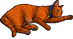 Firestar.kittypet