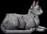 Lichenfur.elder