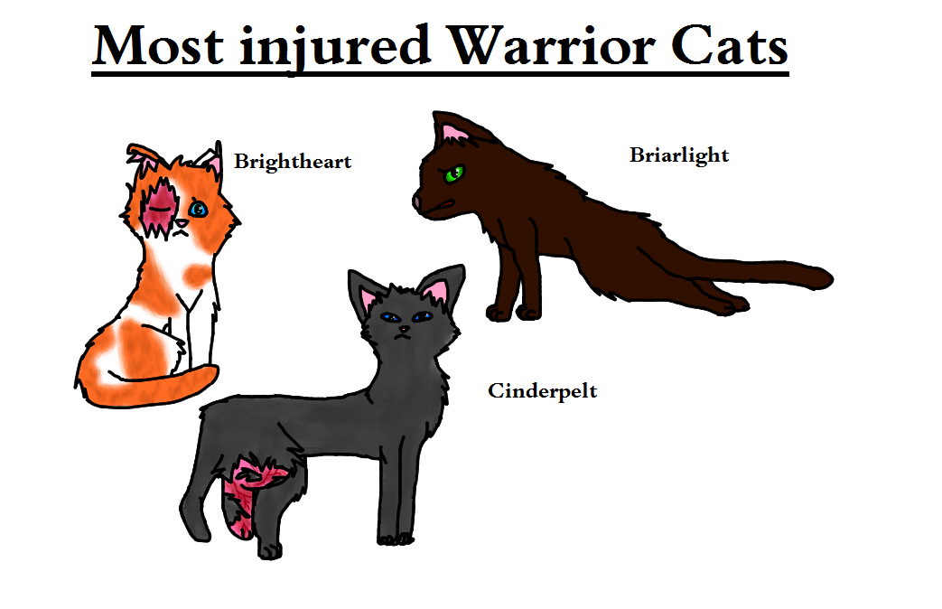 Warrior Cats Love Truth Or Dare