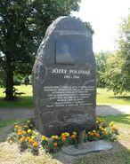 Pomnik Polinskiego