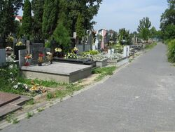 Cmentarz w Golabkach.jpg