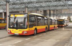 Metro Młociny (autobus 101).JPG
