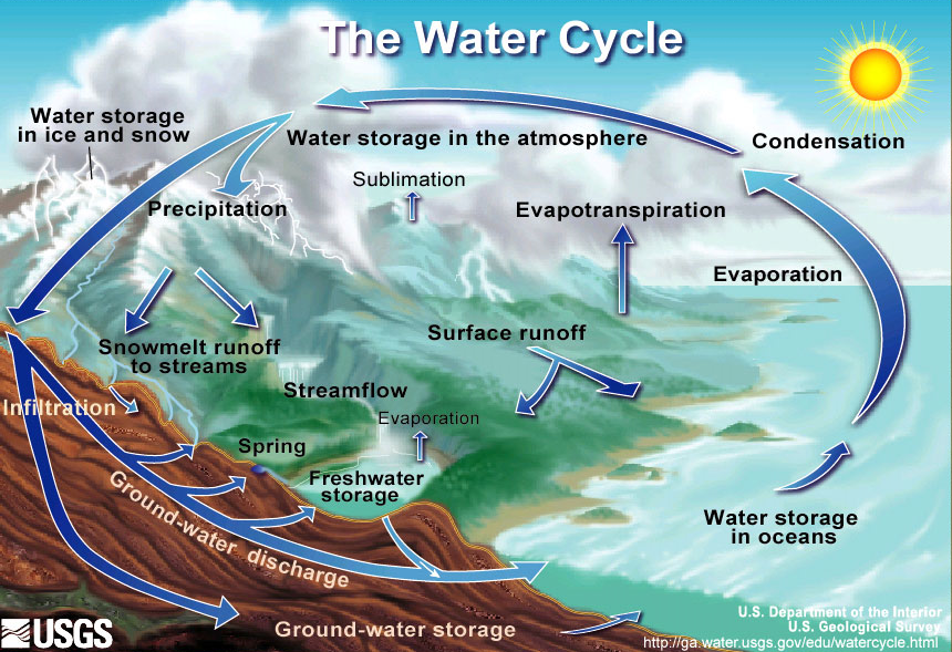 Transpiration Water Cycle Water Cycle