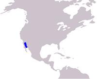 Cetacea range map Vaquita