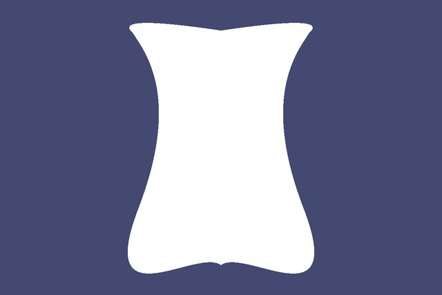 File:Flag of the Iaondi Republic.png