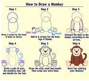how to draw a monkey& 39
