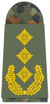 Army Lieutenant General