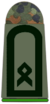 Army Master Sergeant