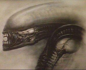 Image alien1