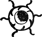 BaharaLucifer