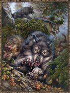 Werewolf pack 1