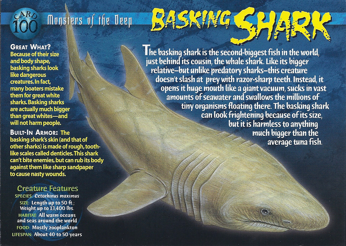 Basking Shark besides Snake Wallpapers together with Snakes furthermore Largest Anaconda In World furthermore Earths Biggest  hibian. on snakehead fish bite