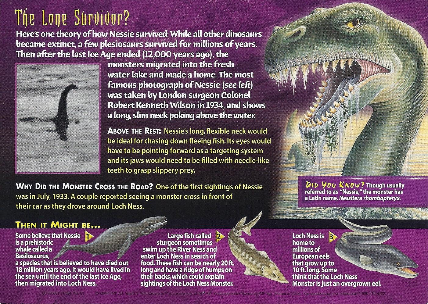 Image Loch Ness Monster Back Jpg Wierd N Wild