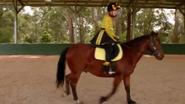 RidingBoots9