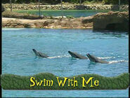 SwimWithMe-SongTitle