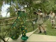 AustraliaZoo-BehindtheScenes