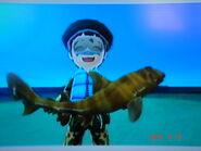 Japanese Bullhead Shark Wii Fishing Resort Wiki Fandom