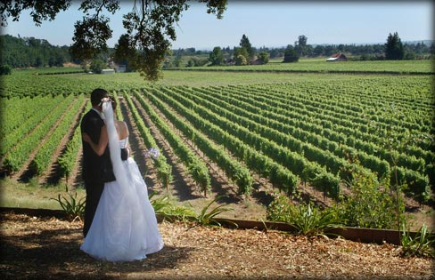 File:WeddingVineyard.jpg