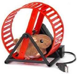 File:Usb-hamster-wheel.jpg