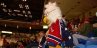 Steagle Colbeagle the Eagle