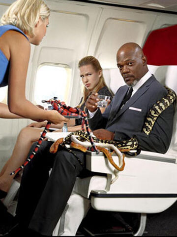File:Snakes-on-a-plane.jpg
