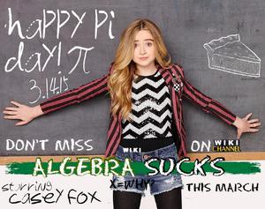 Algebra Sucks Pi Day