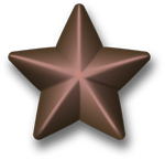 File:Bronze service star.png