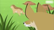 Tracker Behind Prarie Dog