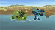 Hippo Power Vs Croc Power