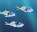 Capture the Fishmobile