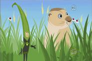 Grass Chris and Prairie Dog