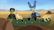 Kratt Bros with Lion cubs