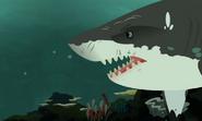 Sharks-Wild Kratts-26