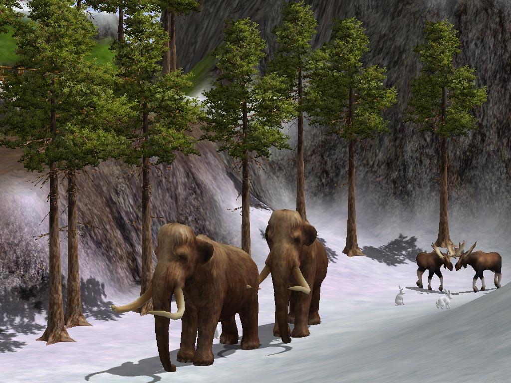 Wildlife Game